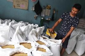 Harga Kedelai Impor Naik, Industri Pakan Ternak Ikut…