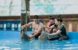 Grand Candi Hotel Semarang Tawarkan Sensasi Berenang Bersama Lumba-lumba