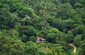 Hutan Sosial di Sumbar Tumbuhkan Perekonomian Masyarakat Desa