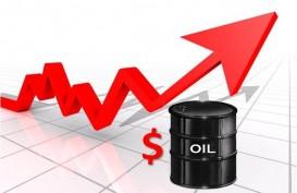 Arab Saudi Pangkas Produksi, Harga Minyak Tembus US$51 per Barel