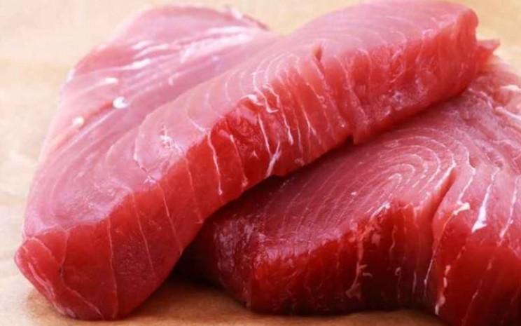 Daging ikan tuna. - Istimewa