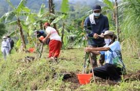 17.000 Bibit Pohon Ditanam di Seputaran Rawapening