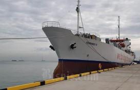 Pelabuhan Patimban Mulai Dikunjungi Kapal Roro