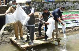 DKP Jabar Tebar 77.000 Benih Ikan di Tasikmalaya