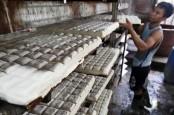 Estimasi Stok Pangan 3 Bulan Mendatang, Kedelai dan Gula Diguyur Impor