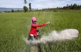 Sawah Kurang Sehat, Petani Diimbau Pemupukan Berimbang