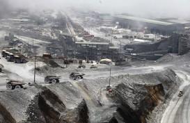 Pembangunan Baru 5,86 Persen, Realisasi Smelter Freeport di Bawah Target