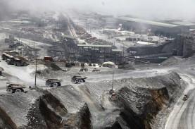 Pembangunan Baru 5,86 Persen, Realisasi Smelter Freeport…