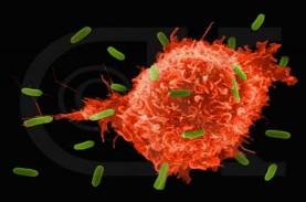 Ciri Imunitas Tubuh Anda Rendah