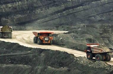 Dipimpin Bumi Resources (BUMI), Saham Batu BaraTerus Memanas