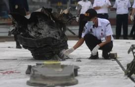 Sriwijaya Air SJ 182 Jatuh: RS Polri Terima 308 Kantong Jenazah, 29 Korban Diidentifikasi