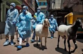 Masih Khawatir Keamanan Vaksin, India Tetap Tancap Gas Vaksinasi Covid-19