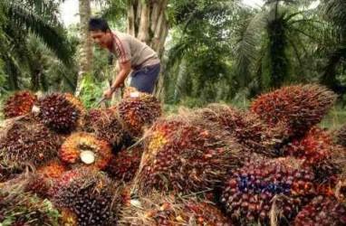 Penghimpunan Pajak KPP Bangkinang Naik 18,57 Persen