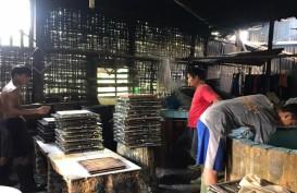 Fluktuasi Harga Kedelai di Medan, Pengusaha: Kami Serba Salah