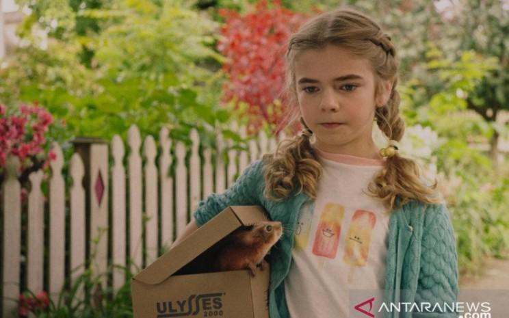 Film 'Flora & Ulysses' akan tayang di Disney Hotstar 19 Februari. - Antara