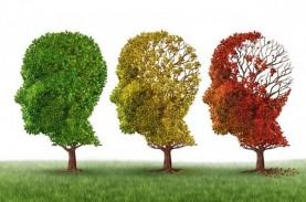 Ini Usia yang Rentan Mengalami Gangguan Otak Akibat…