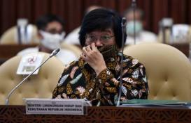 Menteri LHK Jawab Netizen: Banjir Kalsel Bukan karena Penebangan Hutan!