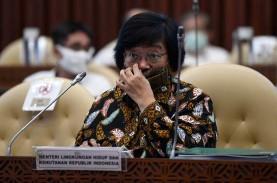 Menteri LHK Jawab Netizen: Banjir Kalsel Bukan karena…