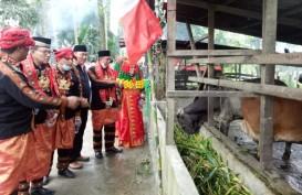 Unik! Begini Cara Kemenag Kembangkan Waqaf Produktif di Aceh