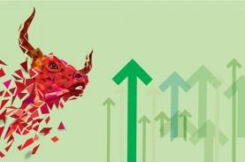 IDX-IC Meluncur, Ini Dampaknya Bagi Emiten Holding Hingga Manajer Investasi