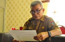 Pengembangan Perkebunan Manggis, 1.400 Bibit Manggis Bakal Ditanam di Padang