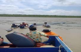 Warga Sungai Kong OKI Selamatkan Paus Terdampar