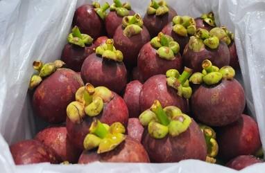 Penerimaan Negara Bukan Pajak dari Sektor Pertanian Bali Rp2,1 Miliar