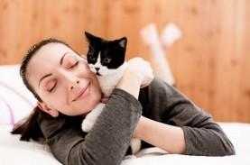 Kucing dan Anjing Membutuhkan Vaksin Virus Corona…