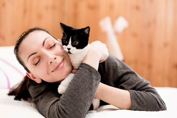 Hewan peliharaan seperti kucing dan anjing bisa menjadi perantara pembawa virus corona yang bisa ditularkan kepada manusia./Ilustrasi - Livejournal
