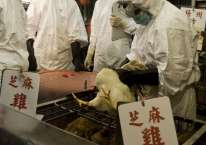 Pekerja yang mengenakan pakaian pelindung berpartisipasi dalam penyembelihan sekitar 2.700 ayam di sebuah pasar di distrik Kowloon, Hong Kong./Bloomberg-Jerome Favre