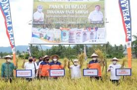 Agro Solution Pupuk Kaltim Tingkatkan Produktivitas…