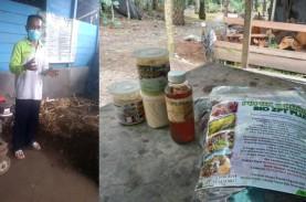 Dakun Setiawan, Petani Juara dari Kabupaten Paser