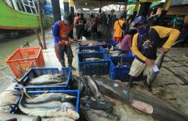 Perikanan Tangkap Indramayu Berkontribusi 40 Persen dari Produksi Jabar