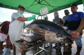 Raih Sertifikat MSC, 11.000 Ton Tuna Indonesia Siap Tembus AS dan Eropa