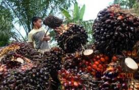Ditopang Olahan CPO, Ekspor Riau Desember 2020 Capai US$1,5 Miliar