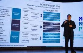 Restu Jokowi dan Janji Erick Thohir Saat Jadi Ketum MES