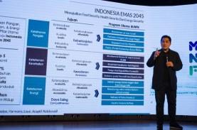 Restu Jokowi dan Janji Erick Thohir Saat Jadi Ketum…