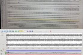 Suara Dentuman di Malang, BMKG Sebut Tak Ada Anomali…