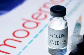 Singapura Setujui Vaksin Covid-19 Moderna, Pengiriman…