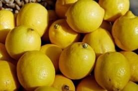 5 Manfaat Jeruk Lemon Bila Dikonsumsi Setiap Hari