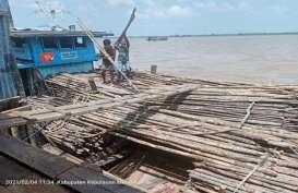 Bea Cukai Riau Gagalkan Ekspor 5.700 Batang Kayu Teki Ilegal ke Malaysia