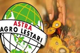 Astra Agro (AALI) Incar Pertumbuhan Produksi CPO 5…