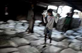 Bukan Revisi, Aturan Fasilitas Impor Bahan Baku Gula Malah Diminta Dicabut