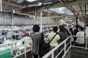 Diskon Pajak Mobil Dorong Industri Otomotif, Komponen Belum