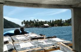 KKP Lepasliarkan Ratusan Ribu Benur Lobster Selundupan di Padang