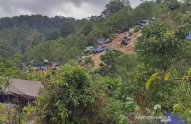 Ketika Penambang Emas Tanpa Izin Menyerbu Taman Nasional Lore Lindu
