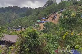 Ketika Penambang Emas Tanpa Izin Menyerbu Taman Nasional…