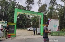 Upaya Tarik Wisatawan, Balai Besar TNLL Benahi Objek Wisata Danau Tambing Poso