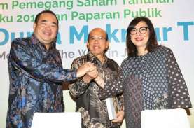 Direksinya Ditunjuk Jokowi Sebagai Dirkeu LPI, Saham…