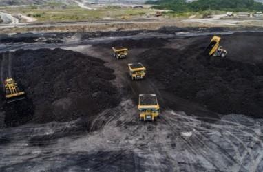 Adaro Energy (ADRO) Bidik Produksi Batu Bara 54 Juta Ton